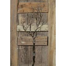 Árbol  caduco alambrado  95 cm s/base marrón