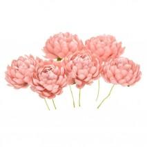 Bolsa de 6 unidades Flor crisantemo 3,5 cm rosa nude