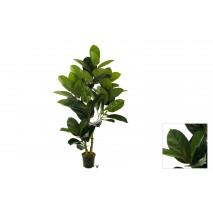 Planta   ficus rubber 120 cm c/maceta
