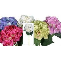 Hortensia x 1 super natural li 114695 rosa