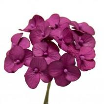Pomito flor mini papel hortensia 2,5cm x 12 buganvilla