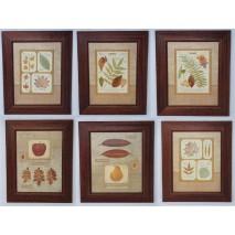 Cuadro marco tabla lamina 30 x 40 hojas