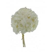 Pomo Hortensia preservada c/tallo  marfil