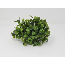 Pick plástico verde mini boj grande