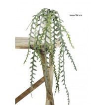 Colgante plástico epiphyllum anguliger 106cm