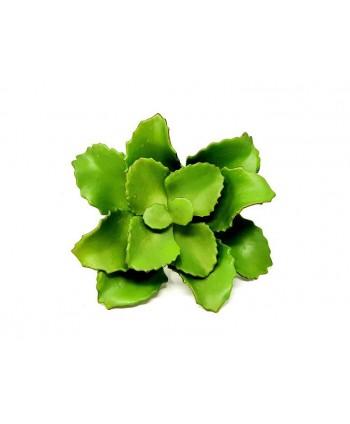 Planta artificial mini d 20cm suculenta Alt 20cm