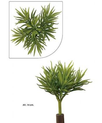 Planta artificial mini plástico succulent pine Alt 14cm