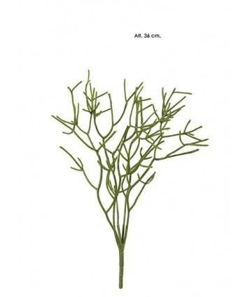 Mata rhipsalis 36cm verde