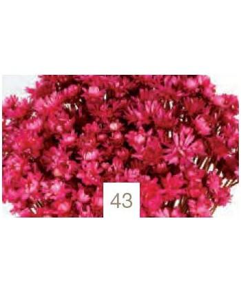 Glixia gigante 50grs  45cm rosa fucsia