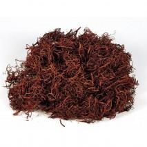 Curly moss 200 g marrón