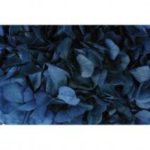 Hortensia preservada sin tallo 14 X 7 cm aproxi. azul marino