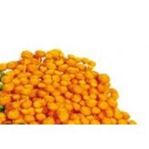 Amarelino seco 45 cm 120 g...