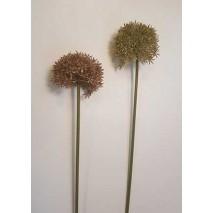 Allium artificial plástico...