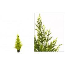 Árbol ciprés  90 cm verde...